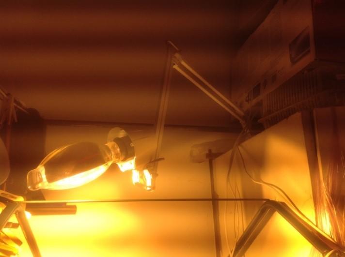 Эксперимент с лампой ДНаЗ