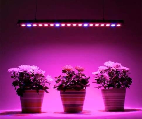 Светильник светодиодный JazzWay Agro PPG T8 15Вт для растений