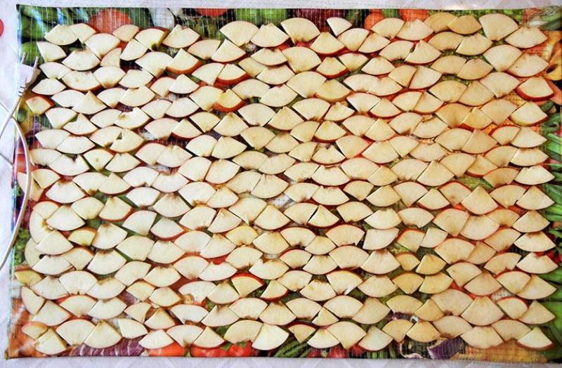 Электросушилка для овощей и фруктов 75*50